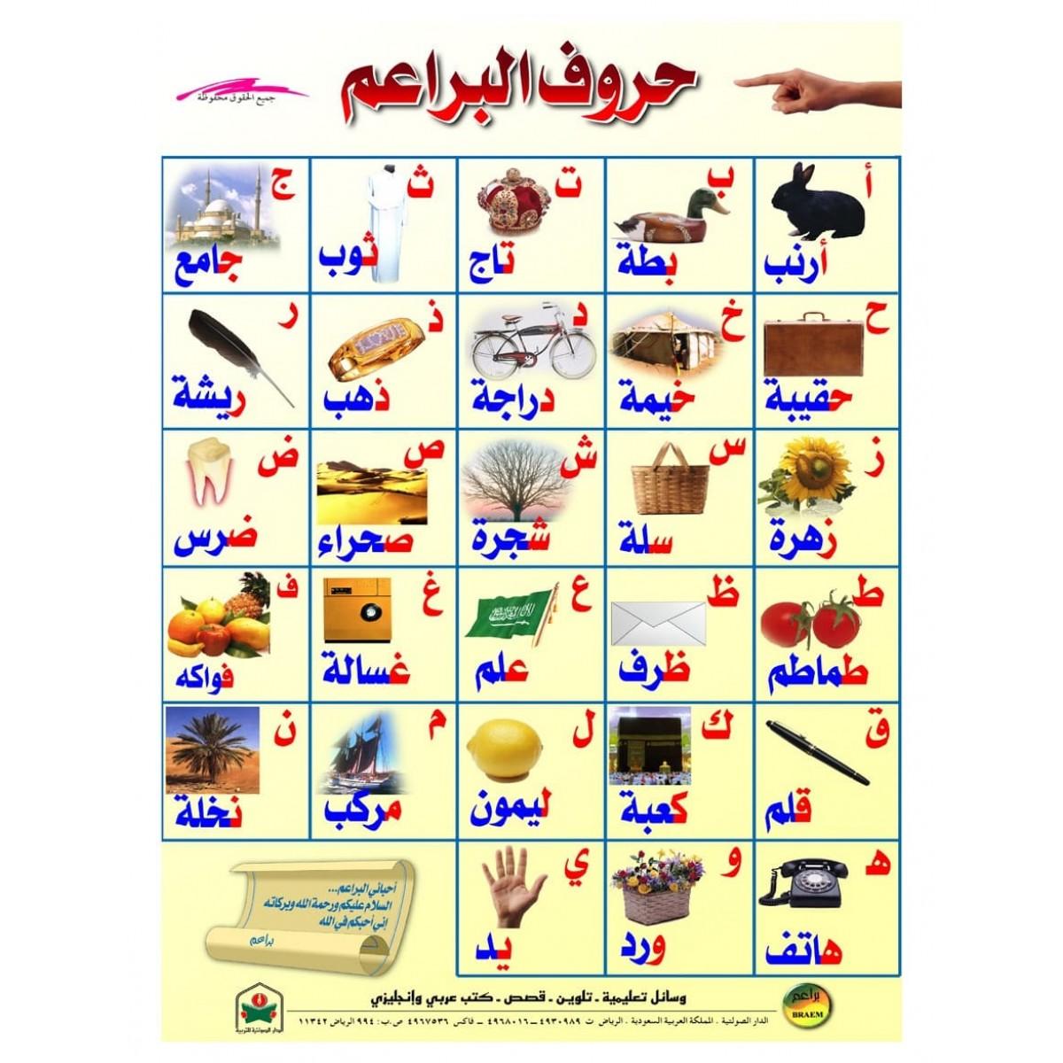 لوحة حروف البراعيم مقاس 70*50 سم