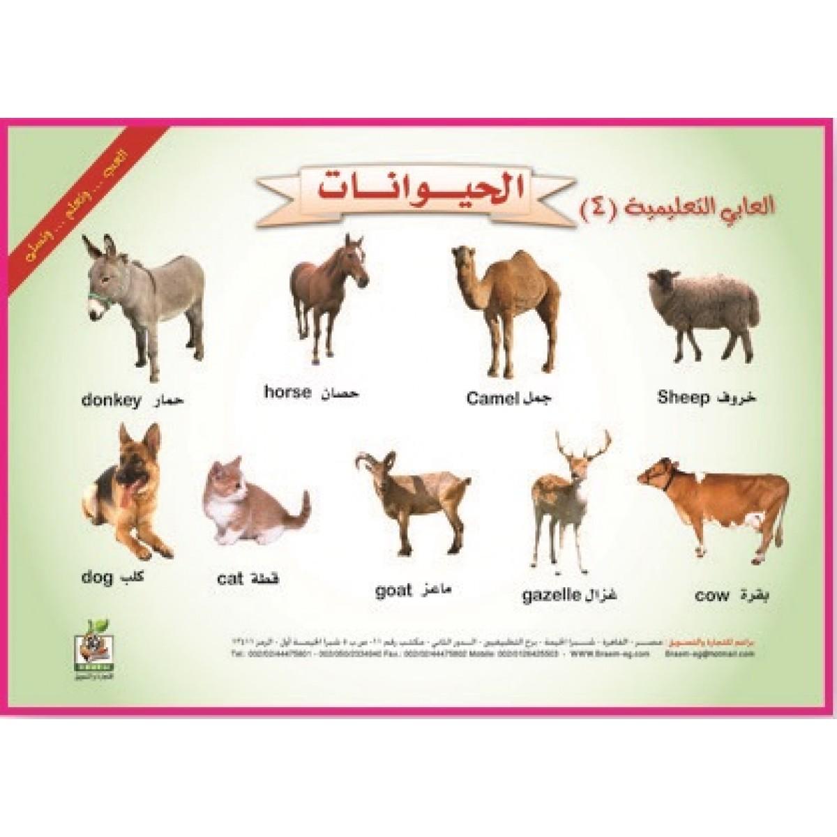 """ألعابي التعليمية  """" الحيوانات""""، مقاس 33*23 سم"""